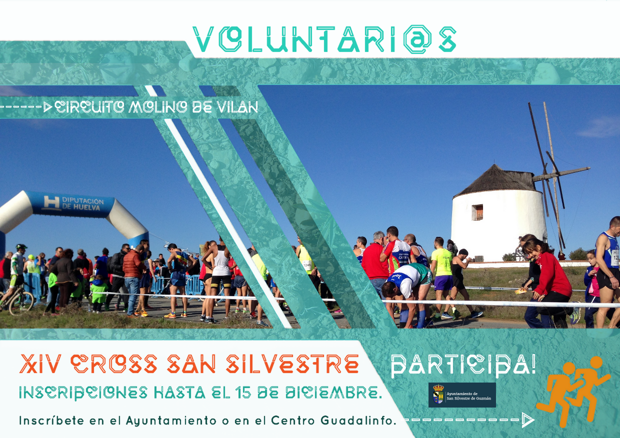 Cartel Voluntarios 2017.