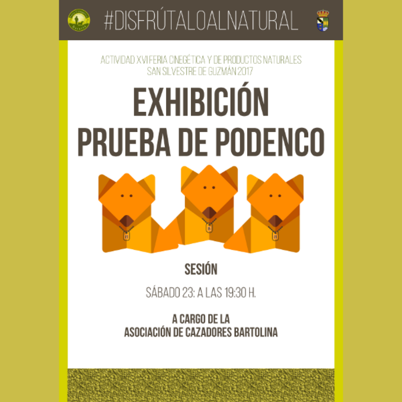 exhibición-podenco
